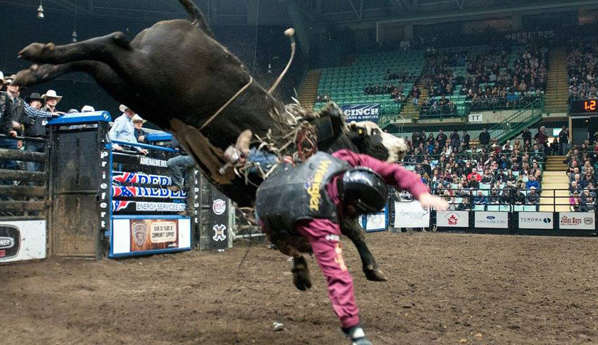 A rider is being thrown off the bull he is riding.